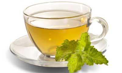 Adelgazar con té verde
