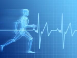 es-util-el-pulsometro