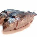 Importancia del pescado en la dieta