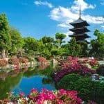 Japón. Turismo gastronómico. Platos saludables del mundo