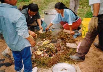 peru-turismo-platos-saludables-del-mundo