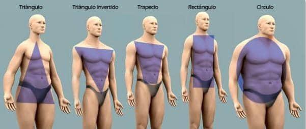 tipo-de-figura-cuerpo-masculino