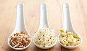propiedades-beneficios-alimentos-germinados