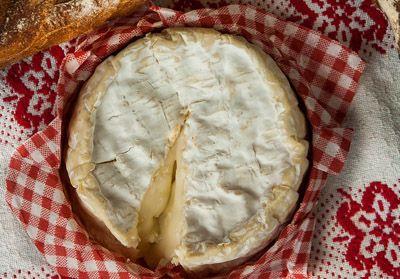 alimentos-ricos-en-proteinas-queso