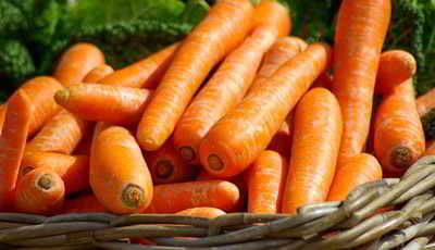 calorias-de-la-zanahoria