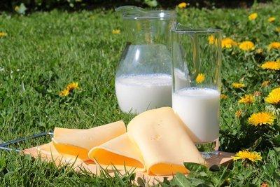 proteinas-de-la-leche