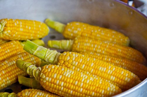 fibra-insoluble-alimentos-maiz