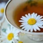 herbodietetica-cursos