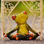 Logo del grupo Amigos del Yoga