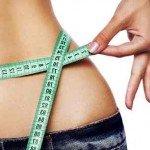 Dieta y Más, probiótico antiobesidad para reducir la grasa corporal